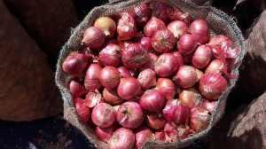 Onion Storing
